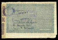 Lot 3842 [2 of 2]:1943 use of 50c violet pair, cancelled with 'PETILIA POLICASTRO/12.7.43/CATANZARO' (A2), on air lettersheet to Rhodes, 'Verificato per censura' tape at right tied by indistinct censor handstamp.