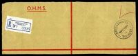 Lot 9340:Bridgewater Junction: - BRIDGEWATER/430P17AU64/TAS-AUST' on stampless strip with blue 'BRIDGEWATER' registration label.  Renamed from Bridgewater North PO 1/7/1895.