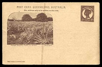 Lot 1148:1898 QV Sideface Views With 2 Line Heading HG #10 1d chocolate on buff, with 'Pineapple Plantation, Nundah, near Brisbane', 1900 printed message for Brisbane Festival Choir & Orchestra, vertical stain on face.