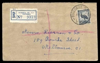 Lot 14232 [1 of 3]:Russell Street: - WWW #40 'RUSSELL ST. C.1/15NO46/VIC' (arcs 4½,4½) on 5½d Emu on cover with blue registration label.  PO 6/11/1924; replaced by 236 Bourke Street PO 2/11/1992.