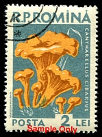 Lot 26952:1958 Fungi SG #2583-92 set of 10.