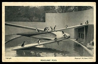 Lot 97:Great Britain: black and white PPC of 'PENGUINS' POOL' at London Zoo, unused.