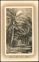 Lot 28506 [1 of 2]:1911 George II HG #2b with brown and white view 'Cocoanut Palm Avenue, Haapai'. Fine unused.