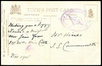 Lot 615:1905 (Dec) use of Tuck's PPC with 'LUND'S LINE OF/AUSTRALIAN STEAME