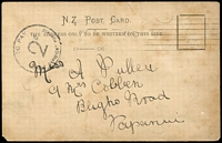 Lot 26399:1906 (Apr 4) stampless PPC (toning) from Christchurch to Papanui 30mm 'TO PAY/2D/DOUBLE DEFICIENT CHARGE' (B1) on face.