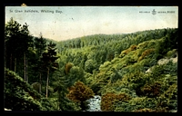 Lot 84:Great Britain - Scotland: multi-coloured PPC 'In Glen Ashdale, Whiting Bay'.