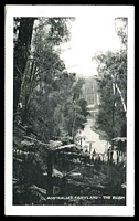 Lot 58 [1 of 2]:Australia: Black & white PPC 'Australia's Fairyland The Bush'.