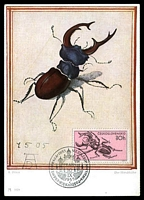 Lot 21515:1955 Stag Beetle 30h tied to maxi card The Stag Beetle by Prague cancel 10 IX 1955, nice card.