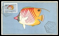 Lot 4409:1952 Coral Fish 10c Coral Fish tied to fine maxi card by Lourenco Marques cancel 11-3-52, nice early card.