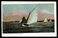 Lot 35:Australia - New South Wales: Multicoloured PPC 'A Champion race, Sydney Harbour'.