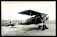 Lot 290:Aircraft: Black & white PPC 'Halberstadt D3', real photo.