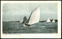Lot 44:Australia - New South Wales: multi-coloured PPC 'A Champion Race, Sydney Harbour', nice yachting card.