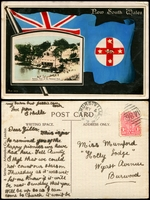 Lot 67:Australia - New South Wales: Multicoloured PPC 'Holiday Time at the National Park'.