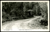 Lot 56:Australia - Victoria: Black & white PPC 'Somers Park, Acheron Way, Vic' real photo.