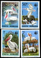 Lot 4358 [1 of 5]:1984 WWF Dalmatian Pelican SG #4899-902 set ** plus set tied to illustrated FDC, unaddressed.