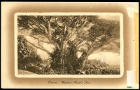 Lot 28507 [2 of 2]:1911 HG #2b 1d red on cream card with view 'Ovava. Captain Cook's Tree' in brown on reverse H&G 2b, minor adhesion on reverse o/wise fine.
