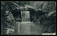 Lot 650:New Zealand - 1925 New Zealand And South Seas Exhibition: Hugh & G.K.Neill PPC of 'IN THE FERNERY'