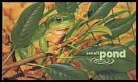 Lot 3552:1999 Small Pond BW #2243w 45c & 50c Frogs minisheet and Stamps PO Pack, Cat $11.