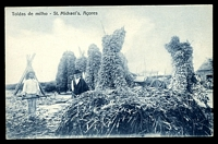 Lot 397:Azores: black & white PPC of 'Toldas de milho - St. Michael's, Açores', unused.