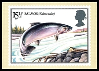Lot 491:Great Britain: House of Questa colour PPC of 'British River Fishes (Salmon)' (reproduction of 15½p Salmon), unused.