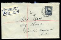 Lot 1193 [1 of 2]:Broken Hill: - 'BROKEN HILL/10SE43/N.S.W.', on 5½d Emu, on registered cover to Norwood, SA, with blue C6 registration label.  PO 1/1/1886.