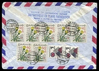 Lot 20484 [2 of 2]:1981 use of 40h flower x10 & 1k Morava x2, cancelled with double-circle '16000 PRAHA 8/30.6.81·19/···' (A1) on air cover to the 13th International Botanical Congress Australia, from the Institute of Experimental Botany, Prague.