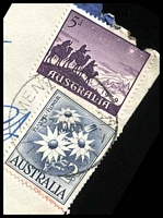 Lot 3022 [1 of 3]:Mentone: - WWW #60B 'MENTONE S.11/27NO59/VIC-AUST' (arcs 2½,3, A1 backstamp) on 2/- Flannel Flower & 5d Christmas on cover to Melbourne with blue C6 registration label. [Rated 2P]  PO 16/5/1884.