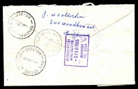 Lot 2603 [2 of 2]:Bendigo Mail Centre: - WWW #510 violet boxed 'REGISTRATION/MAIL CENTRE/5FEB1986/BENDIGO/VIC. 3550' backstamp on Security Post cover, franked with 3c Frog, 80c Pineapple Fish & $2 Painting x2, 5 Feb 1986 Mildura cds.  MC 13/11/1977.