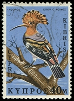 Lot 19004:1969 Birds of Cyprus SG #338 40M with V1 damaged K of KIBRIS.