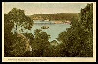 Lot 361 [1 of 2]:Australia - New South Wales: Multi-coloured PPC 'A Glimpse of Middll (sic) Harbour, Showing the Spit', Regal Series, Sydney card, franked with 1d Arms, cancelled with 'PARRAMATTA/31.OC.07 6-PM/N.S.W' (A2), to Clarence River.