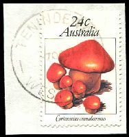 Lot 19552:Tenindewa: - 'TENINDEWA/7OC81/WEST-AUST', #E31, on 24c Fungi.  Renamed from Wollya RO 1/3/1910; PO 4/2/1917; closed 17/4/1985.