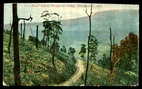 Lot 1466 [2 of 2]:Wahroonga: - BN on 1d Arms tied by framed 'WAHROONGA/MR31/1909/N.S.W' (A2) on multicoloured PPC 'Road Scene, Kangaroo Valley, Shoalhaven Dist.' Nature Series card, trimmed along top edge, corner faults.  PO 15/10/1896.