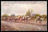 Lot 1917 [2 of 2]:849: unframed duplex 'MURTOA/JL7/05/VICTORIA - 849' on 1d pink on multicoloured PPC 'Camel Train at Bourke' Kerry Photo, Sydney, writing on both sides.  Allocated to Murtoa-PO 1/8/1874; LPO 31/5/1996.