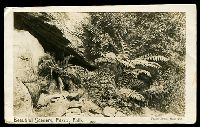 Lot 58 [1 of 2]:Australia - New South Wales: black & white real photo PPC 'Beautiful Scenery, Fitzroy Falls' Taylor Bros card, franked with 1d Arms, light framed 'SUTTON FORR