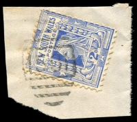 Lot 765:1501: BN on 2d blue.  Allocated to Peak Hill-PO 7/11/1889.