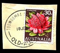 Lot 8795:Toowoomba Town Hall: - 'TOOWOOMBA TOWN HALL/18JE71/QLD-AUST' (arcs 5,5) on 30c Waratah. [Rated 3R]  PO 2/6/1958.
