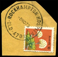 Lot 1700:Rockhampton Hospital: - 'ROCKHAMPTON HOSPITAL/5NO75/QLD-4700' (ERD) on 18c Flower. [Rated R]  PO 9/12/1949.