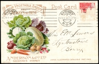 Lot 775:Anderson & Co Ltd illustrated (vegetables) acknowledgement Post Card for Seedsmen - Our vegetable seeds are always the best franked with 1d red KGV (mostly removed), 11 Aug 1916 Sydney machine cancel.
