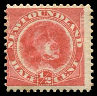 Lot 4251:1887-88 SG #49 ½c rose-red, Cat £15.