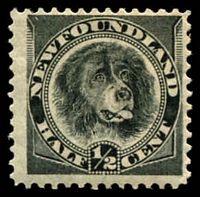 Lot 4016:1894 New Colours SG #59 ½c black, Cat £10.
