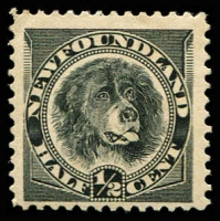 Lot 26682:1894 New Colours SG #59 ½c black Dog, Cat £10