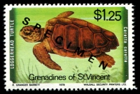 Lot 4398 [1 of 4]:1979 Turtles SG #135s-8s complete set, with 'SPECIMEN' ovpt. (4)