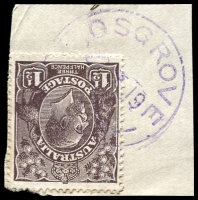Lot 2864:Cosgrove: - WWW #20 violet '[C]OSGROVE/22FE19/[VIC]' on 1½d black-brown KGV on piece. [Rated R]  PO 5/12/1888; closed 28/9/1979.